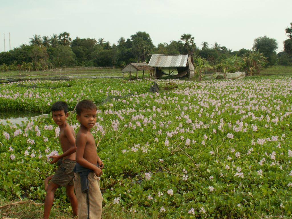 cambodge-136