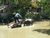 cambodge-062
