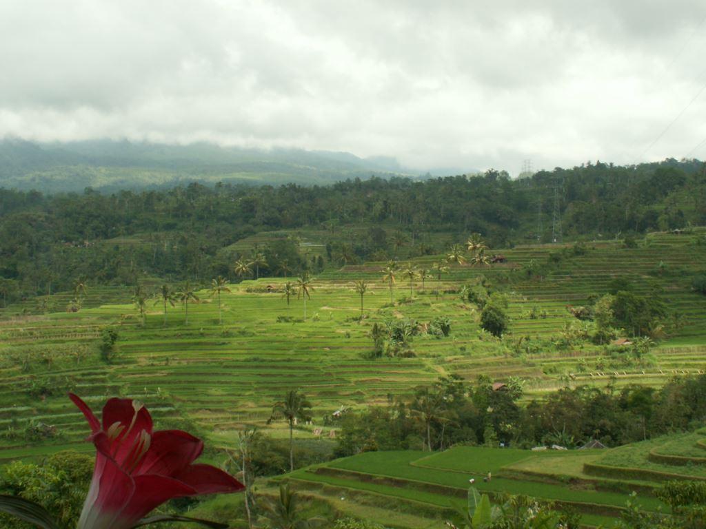 indonesie-03