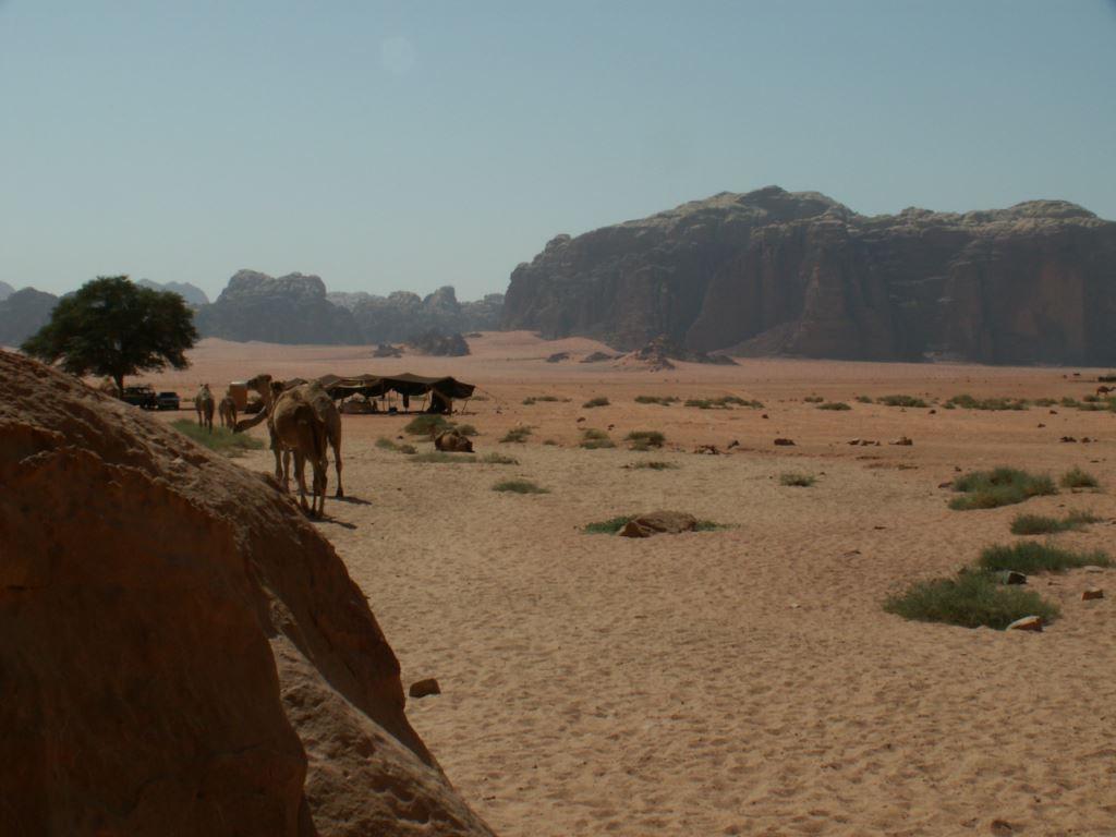 jordanie-187