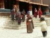 tibet-230