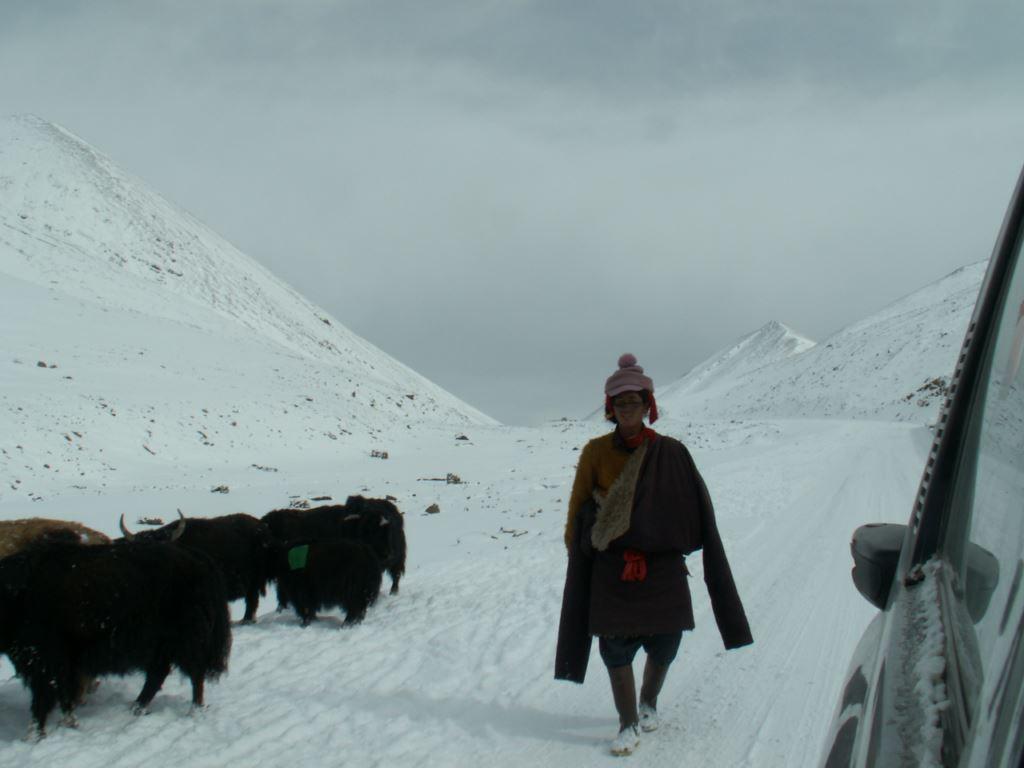 tibet-150