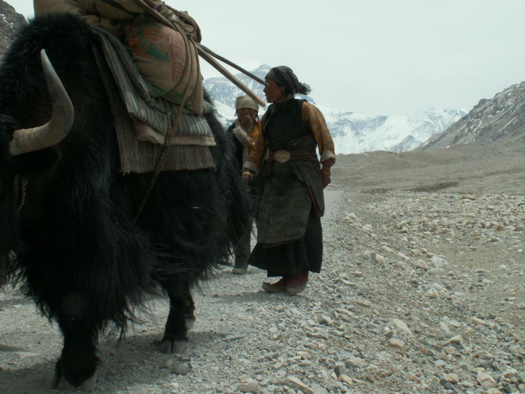 tibet-281