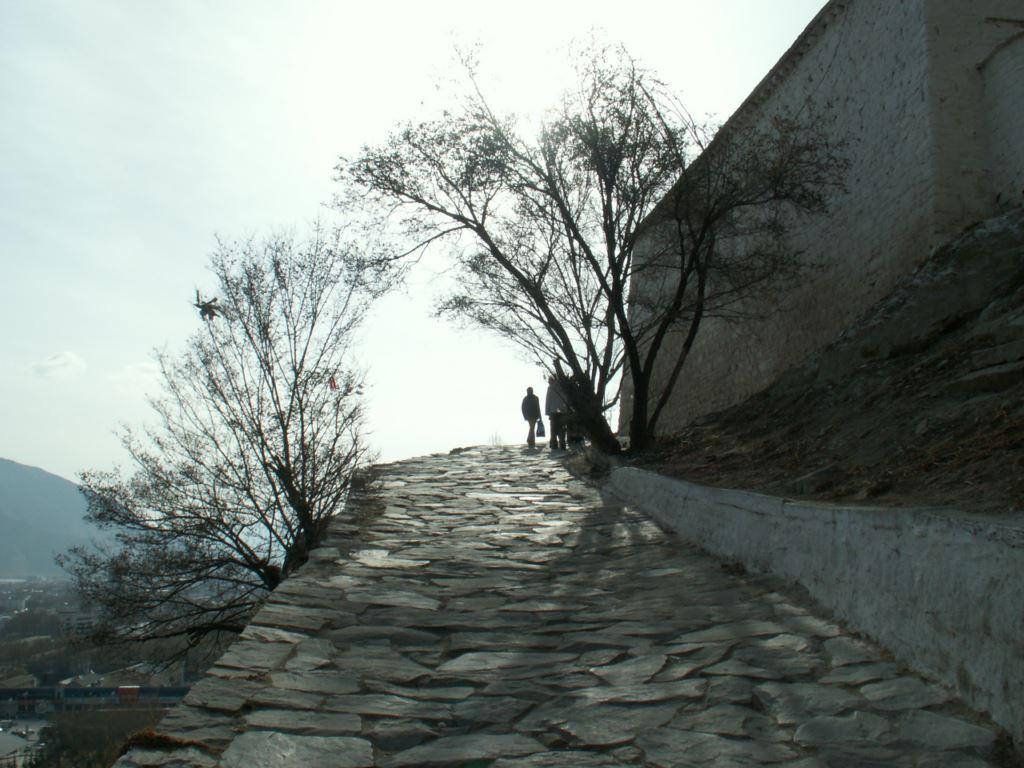 tibet-046