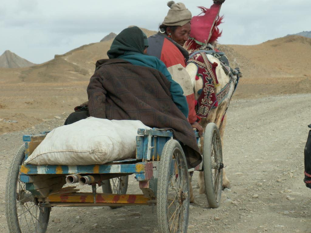 tibet-291