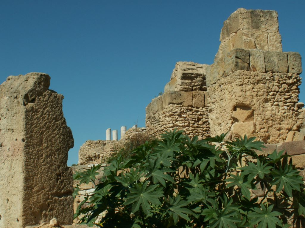 tunisie-013