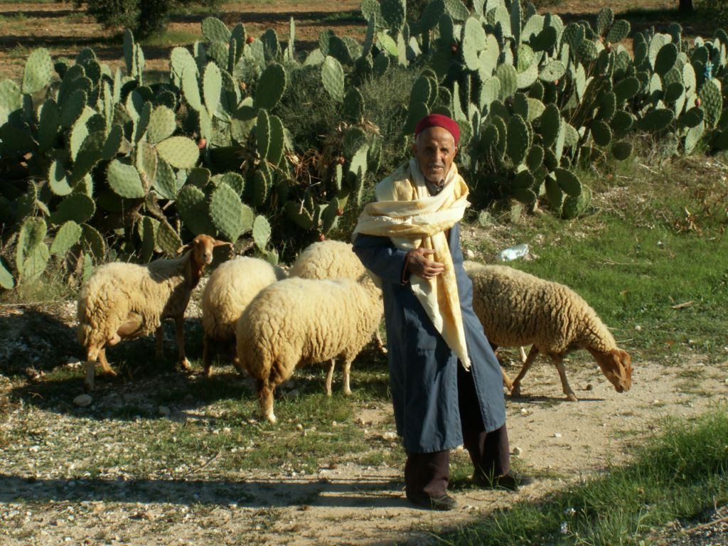 tunisie-097