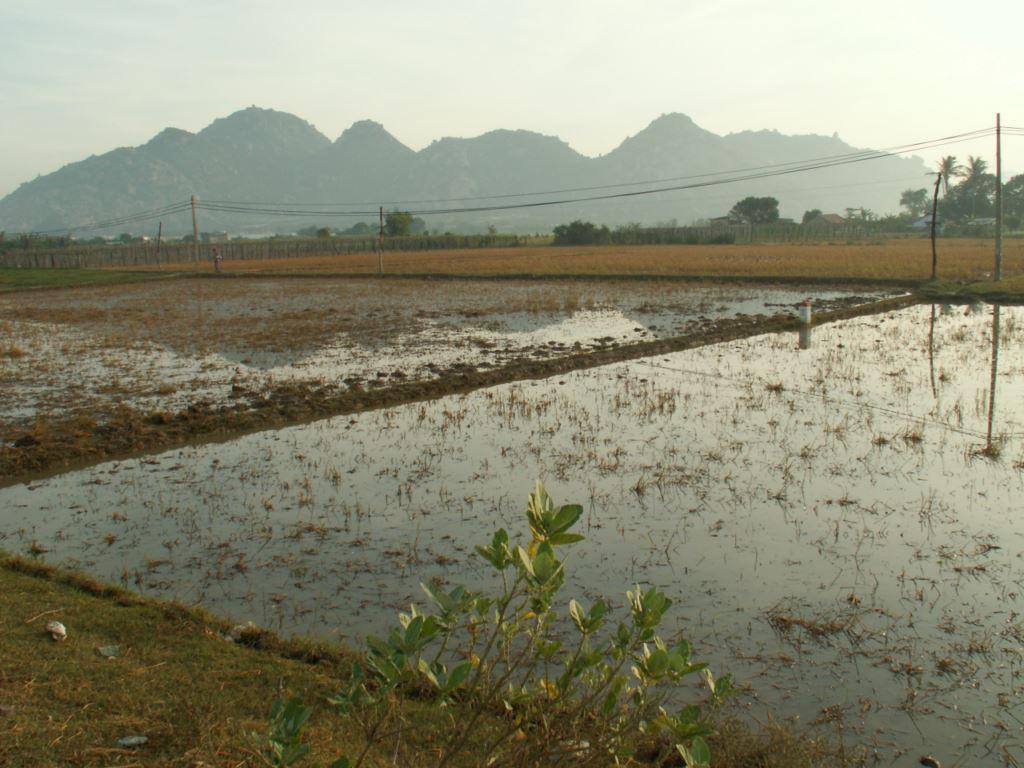 vietnam-036