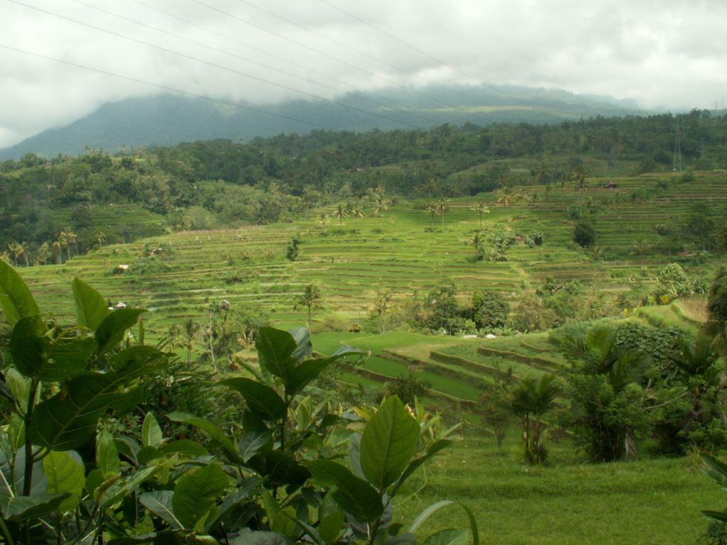 indonesie-06