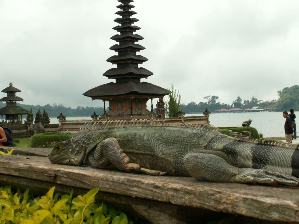 indonesie-08