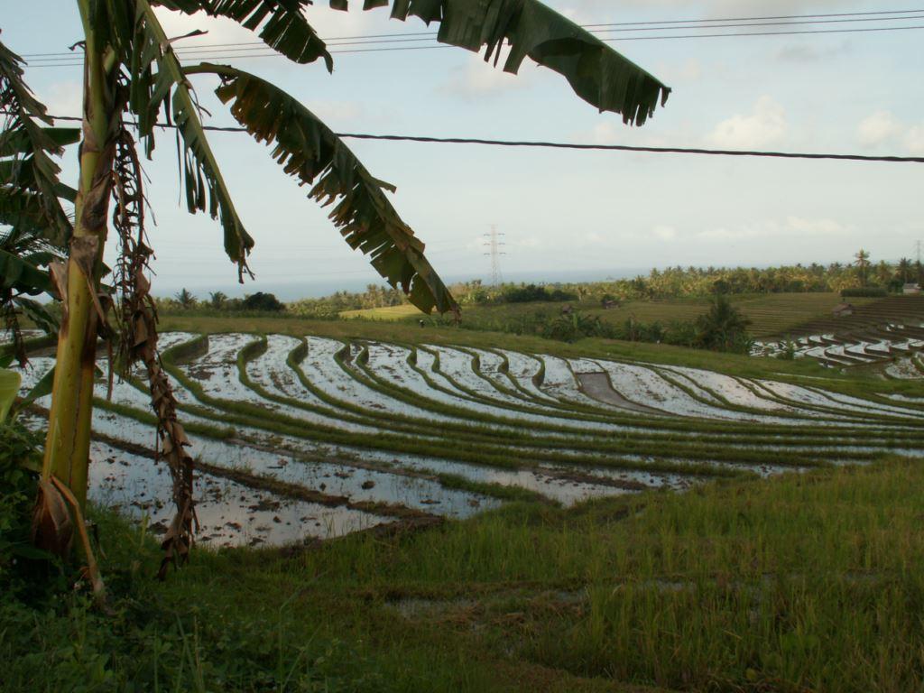 indonesie-29