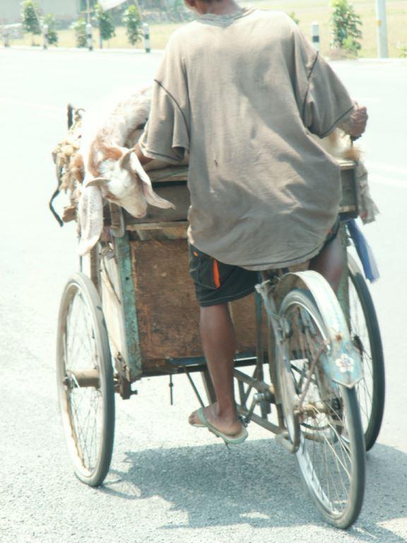 indonesie-55