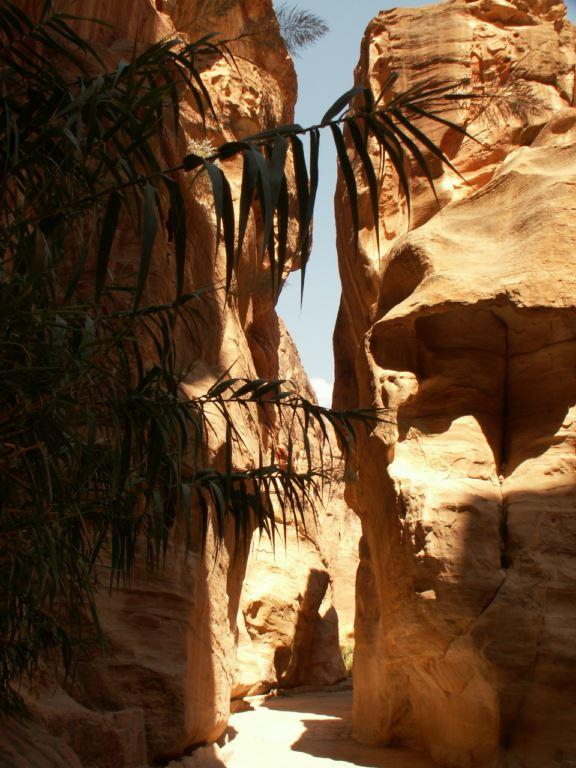 jordanie-163