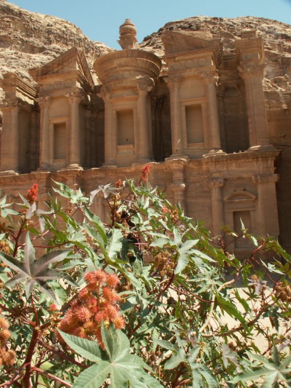 jordanie-173