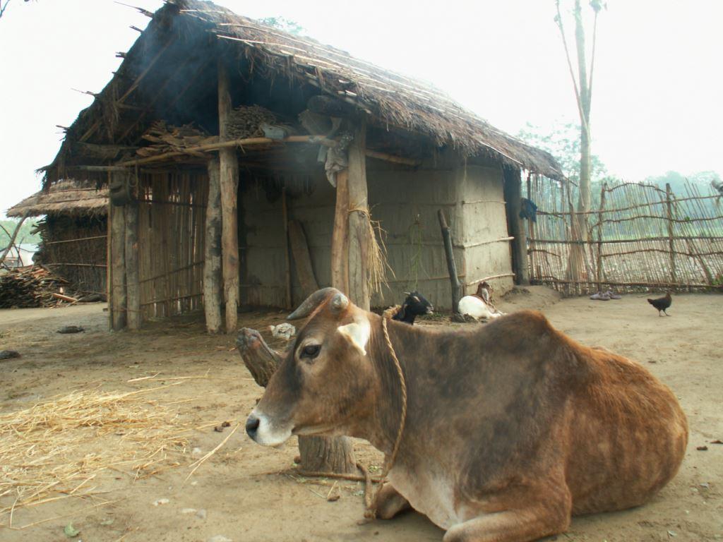 nepal-162
