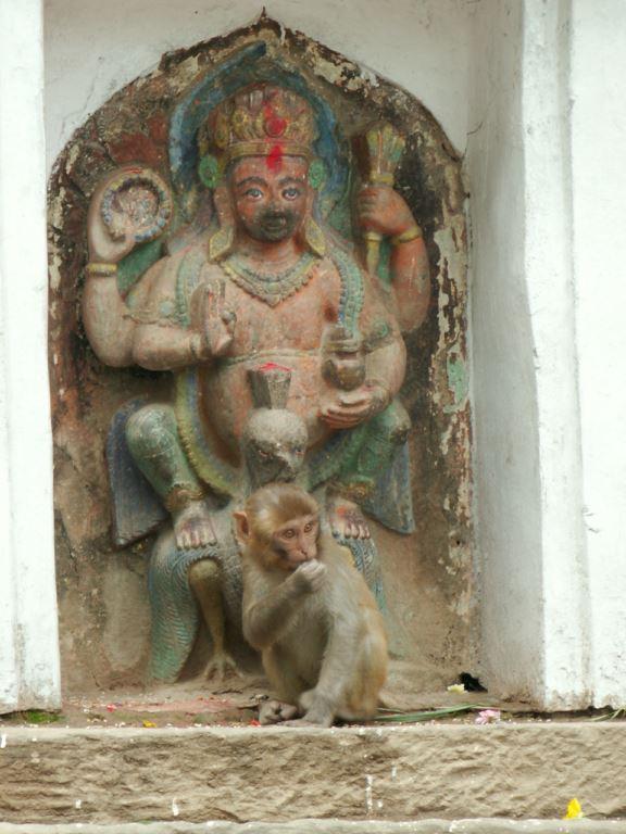 nepal-258
