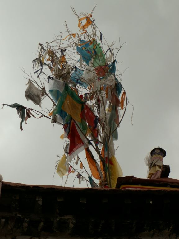 tibet-196