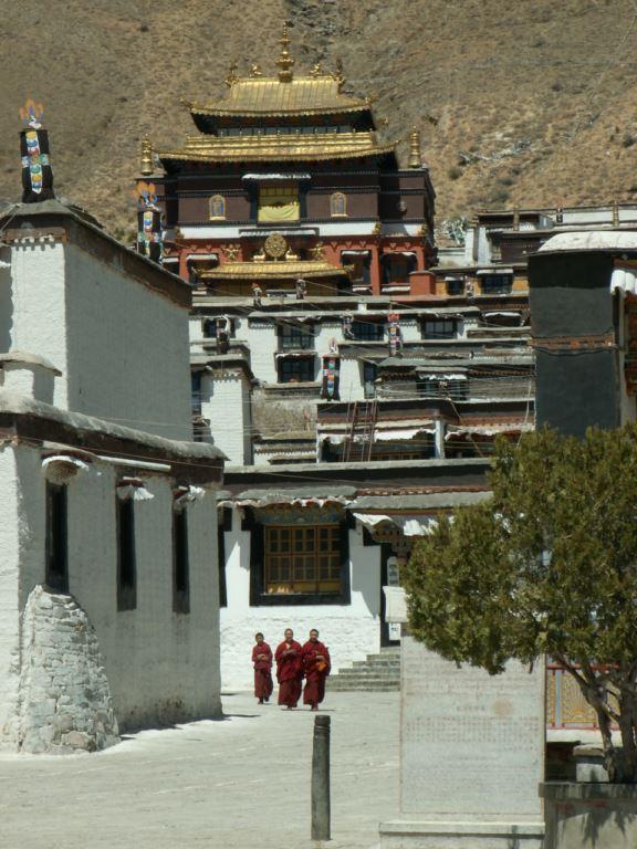 tibet-247
