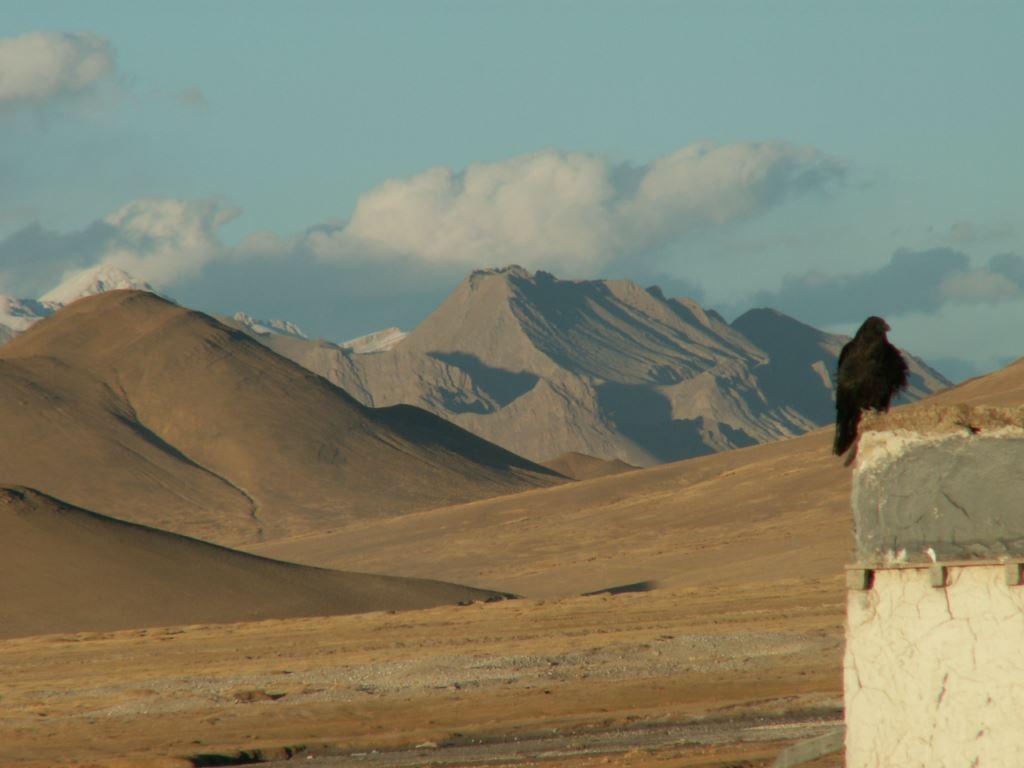tibet-317